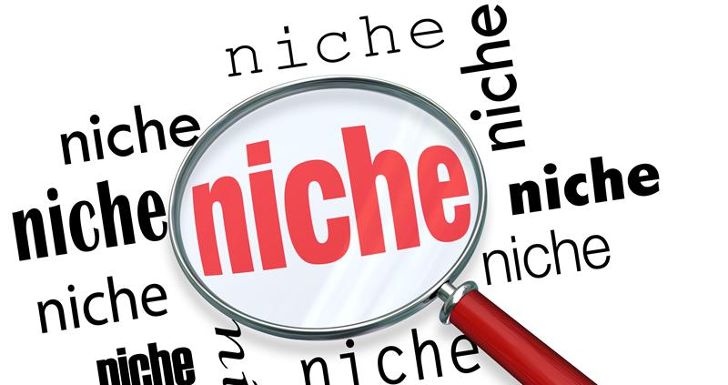 Define a Niche?